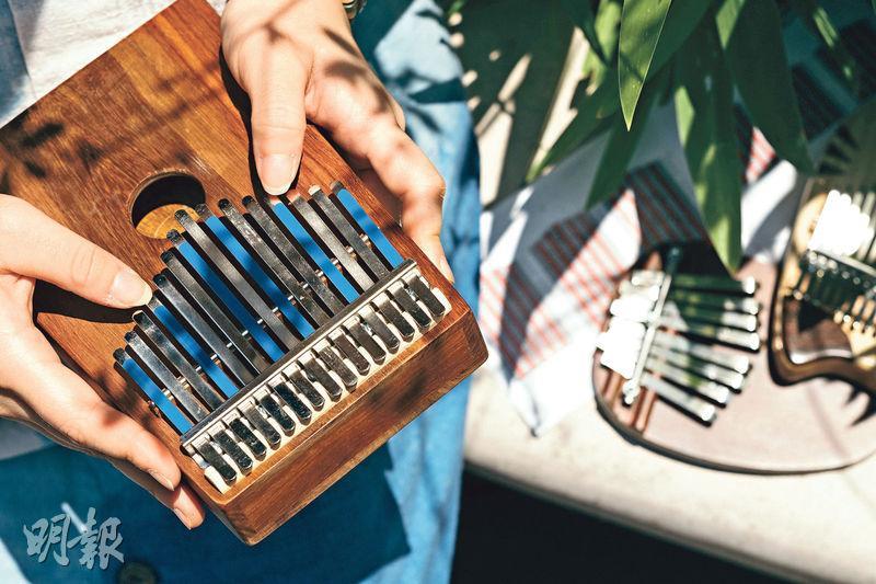 易學便攜 售價百元起 彈撥拇指琴 好玩奏名曲