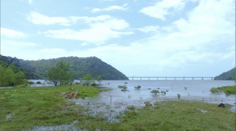 【有片】大嶼訪「巨人」 千里眼看未來