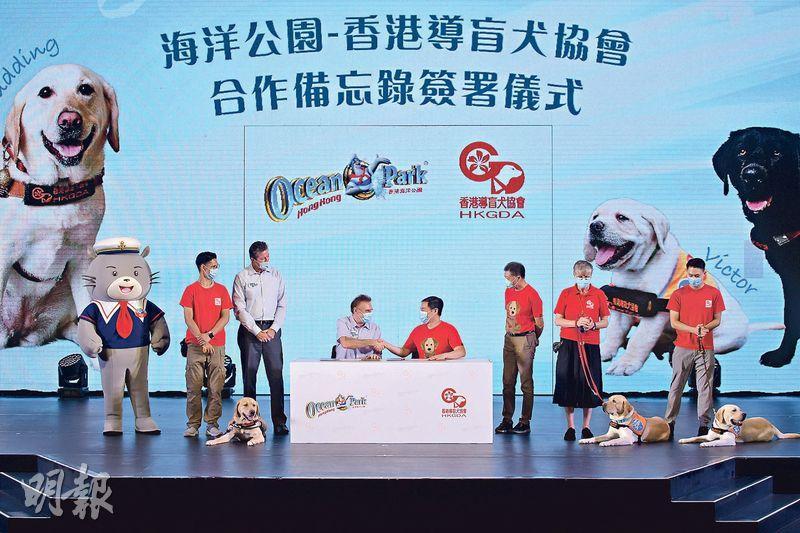 導盲犬服務不足 海洋公園助本地繁殖