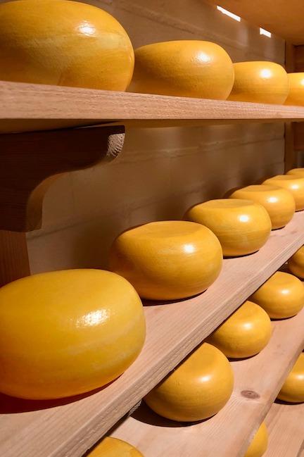 吃奶製品吸收益生菌 芝士補鈣減壓力(附補鈣食物表)