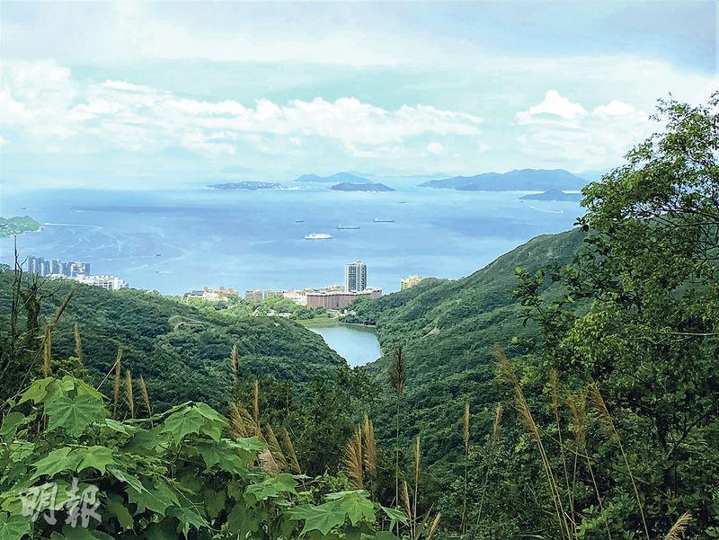 【行山郊遊】樹蔭伴登山頂 零死角賞維港靚景
