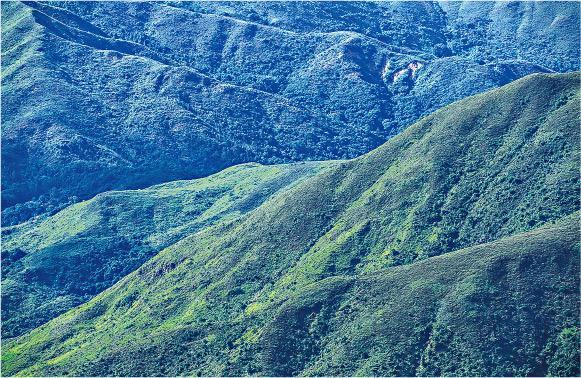 【行山郊遊】攝影達人帶路 遊新界西 爬上鱷魚背 賞連綿山脈