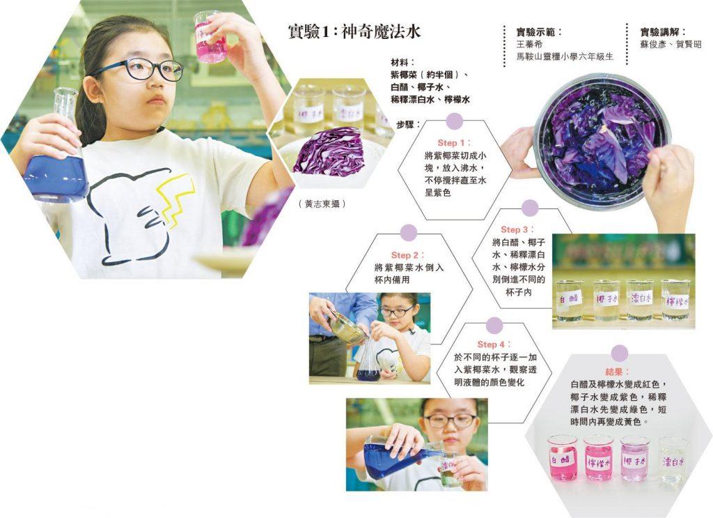 神奇小實驗 紫椰菜「整色整水」 花青素測酸鹼