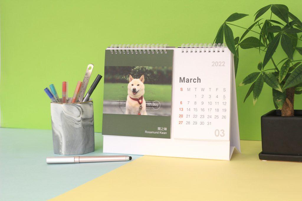 位您寵推出萌爆寵物月曆 與名人明星毛孩攜手行善 支持愛協貓隻領域護理計劃