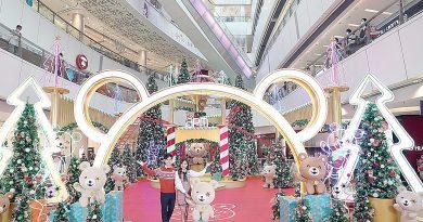 apm聖誕熊樂園