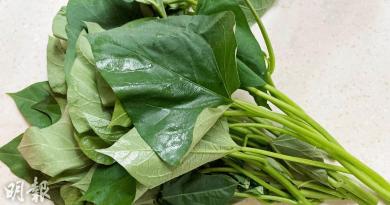 健康之選丨番薯苗含至少5種營養素 低脂低卡路里 營養師建議......
