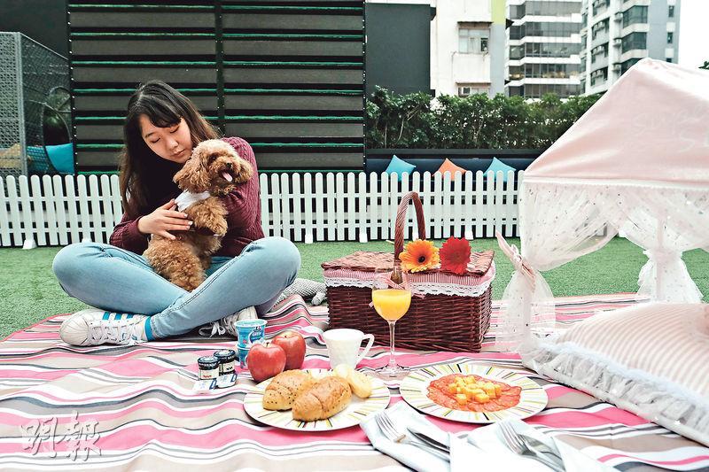 帶毛孩staycation 包寵物美容、生日蛋糕、攝影服務 與主子放電歎世界