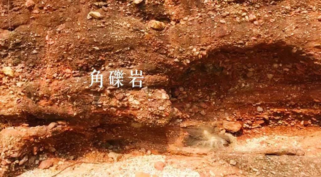 眼睛去旅行丨30秒睇香港最細島嶼鴨洲 有紅色角礫岩、海蝕拱同大白鷺?