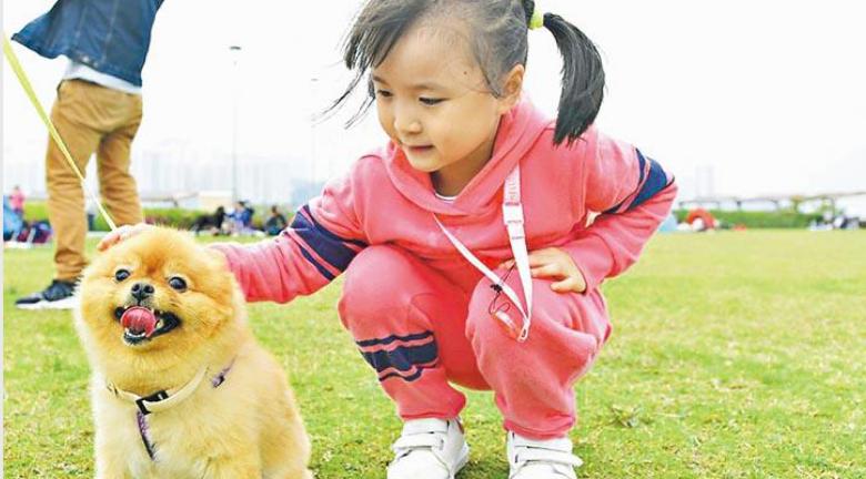 【與毛孩同樂】周六起增設逾30個寵物共享公園 遍及全港16區