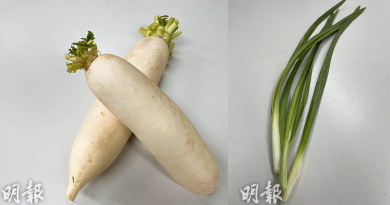立春宜養肝 中醫推介白蘿蔔、韭菜、紫蘇三食材