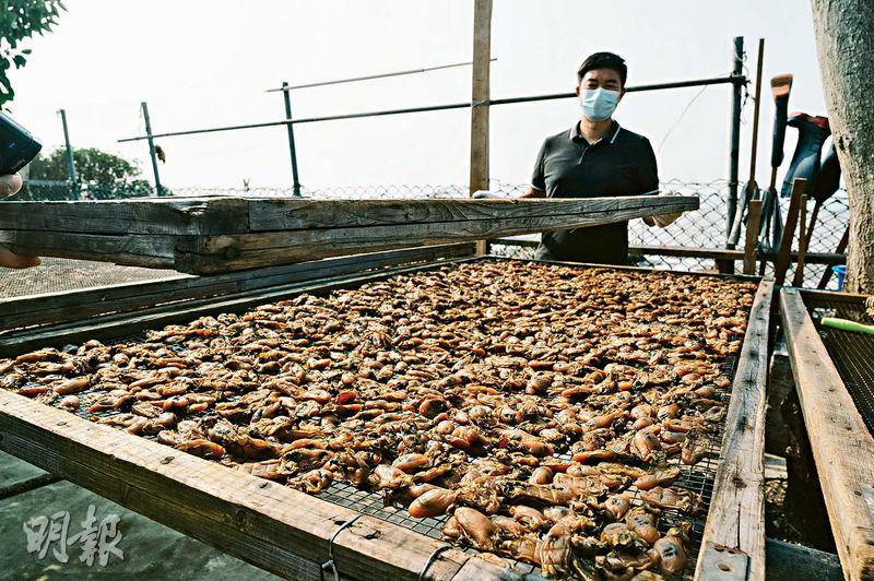 周末自駕遊丨走入屏山圍村 食元祖盆菜、買金蠔 尋找隱世潮式老糖