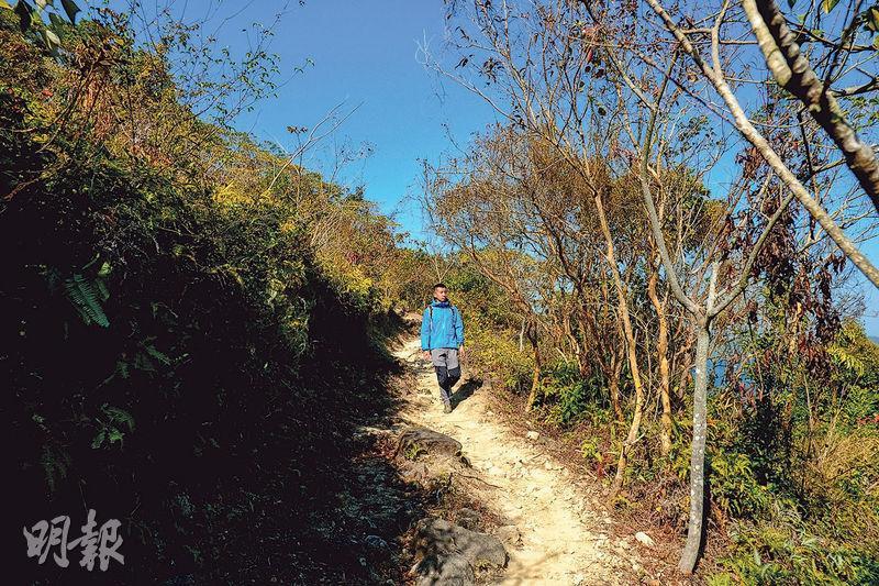 郊遊好去處丨入門級路線 遊西貢海下灣 迎距離欣賞珊瑚