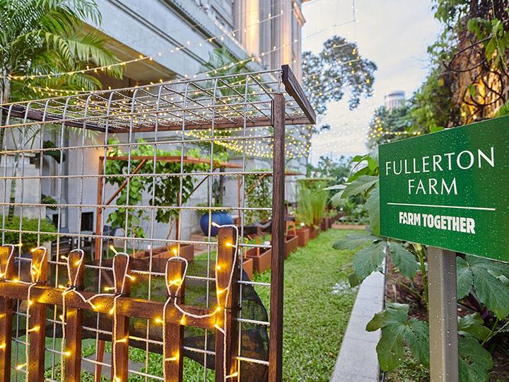 綠色生活|「一喜種田」天台都市農莊 將大自然播種入社區深耕細作 足跡遍及港九新界 致力為社區綻放綠色生機