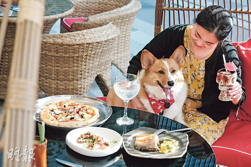 東涌隱世寵物友善餐廳 感受熱帶風情 必食邪惡慢烤乳豬