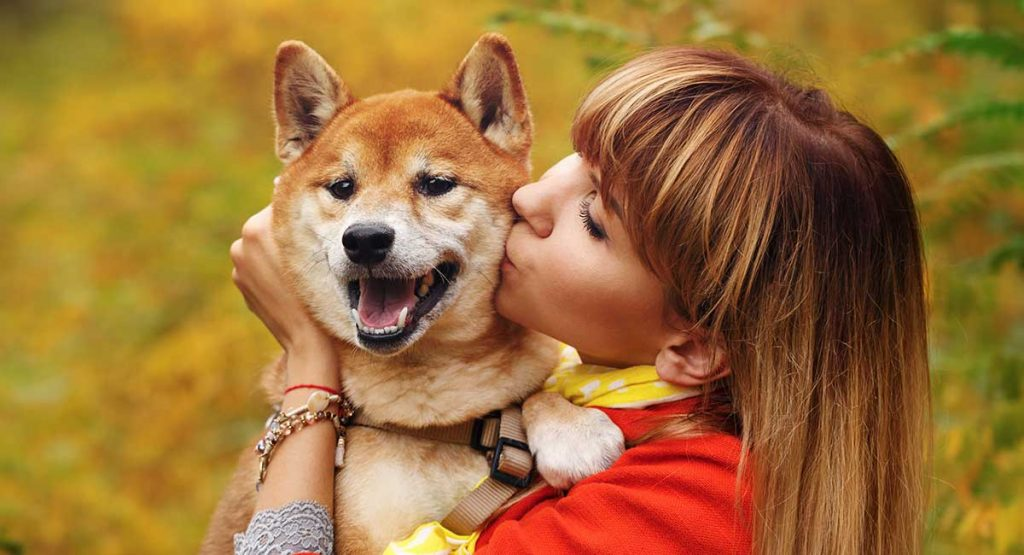 寵物保險丨5種寵物保險比較 必睇3大因素:涵蓋疾病、墊底費、續保年期 終身續保最抵