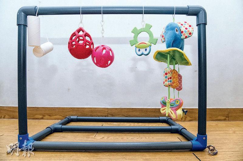 10個DIY創意寵物玩具 廁紙筒、膠管變毛孩放電遊戲 室內都玩得開心