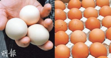 摸雞蛋後腸胃炎?!雞蛋可唔可以用水洗?食安中心話你知!