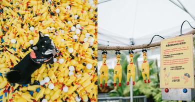 The Pulse X Life Mart|「尖叫吧!寵物嘉年華」 逾5000隻尖叫雞陪你瘋狂發洩 再與毛孩人寵共樂 奴才主子默契大考驗!