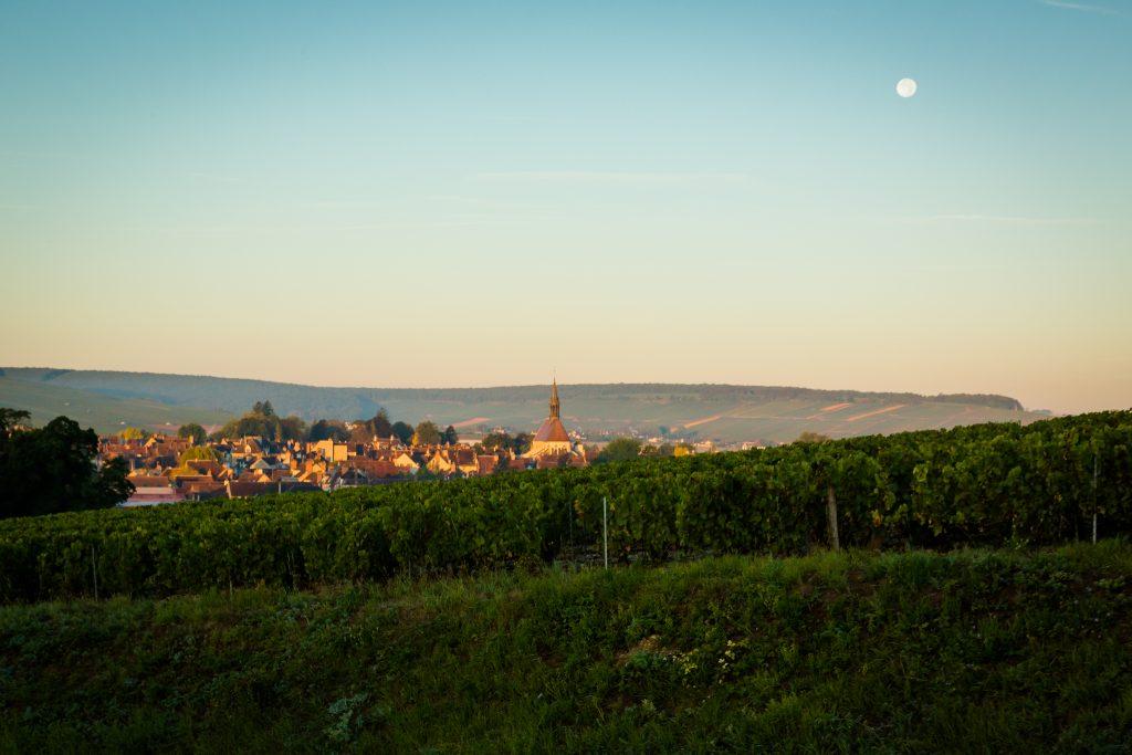 法國名釀沙比利 清爽夏日衝擊 以酒釀礦物感受優雅風韻