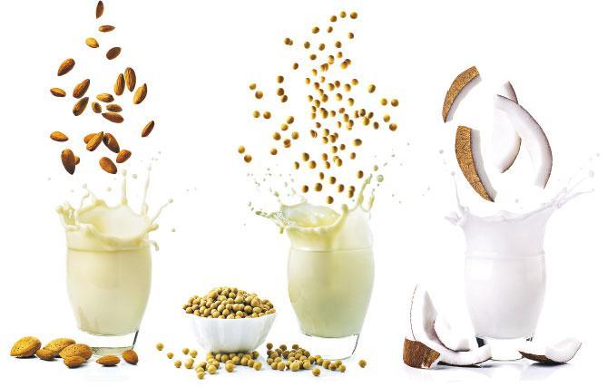 乳糖不耐症救星丨植物奶 V.S. 牛奶 營養大不同 難取代牛奶