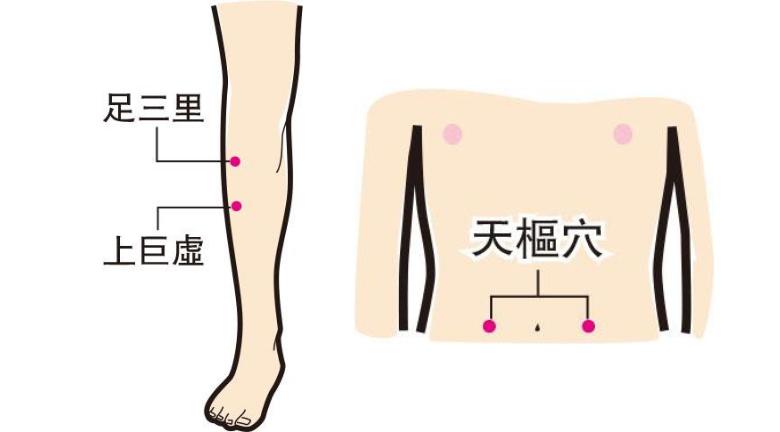 按穴位醫腸胃 按足三里、上巨虛、天樞穴 助整腸通便