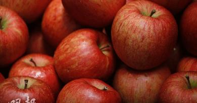 營養師表示,紅蘋果花青素較多,顏色愈深花青素含量愈高。(資料圖片)