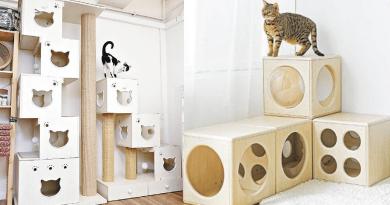 隨意組合——在Three Little Meow可找到拍拍方格跳箱窩,共有4個款式,主人可根據家中環境和貓咪需要隨意組合,也可單個使用。($650至$950不等)(品牌提供)