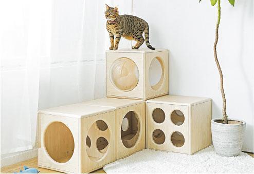 高質寵物用品大晒冷!方格跳箱窩、半半貓跳台 主子開心貓奴放心