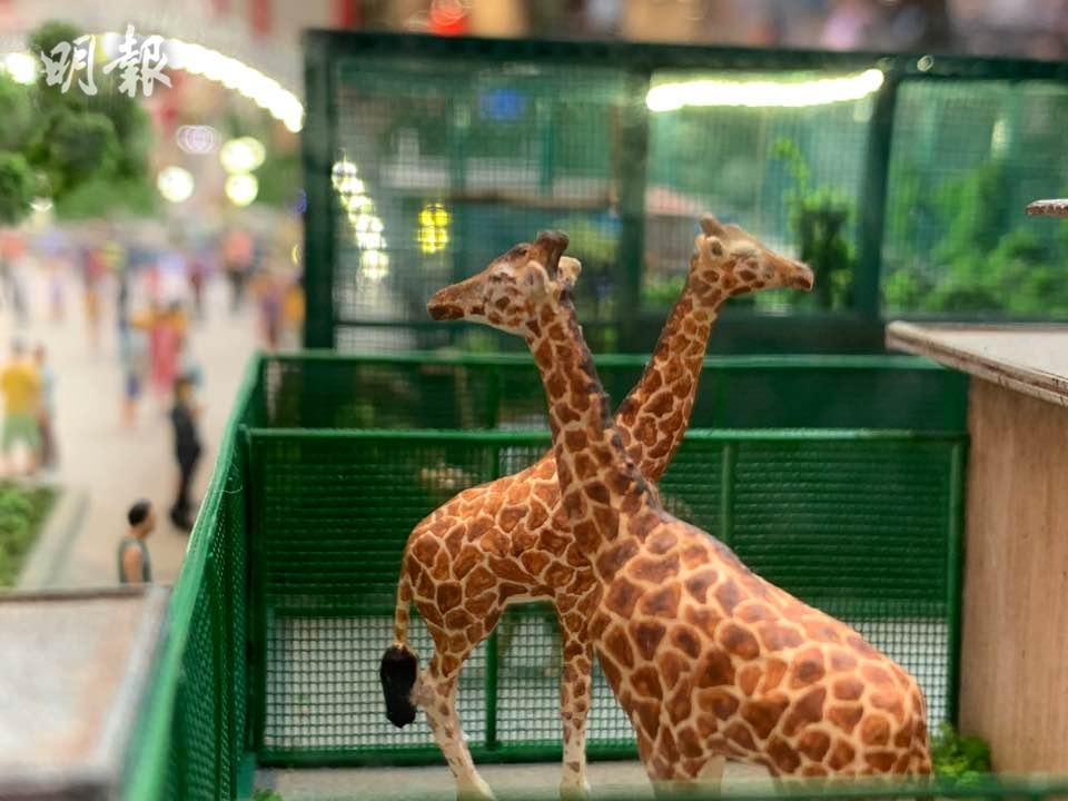 荔園遊樂場 將軍澳廣場 展覽 荔園 動物園 荔園微縮模型