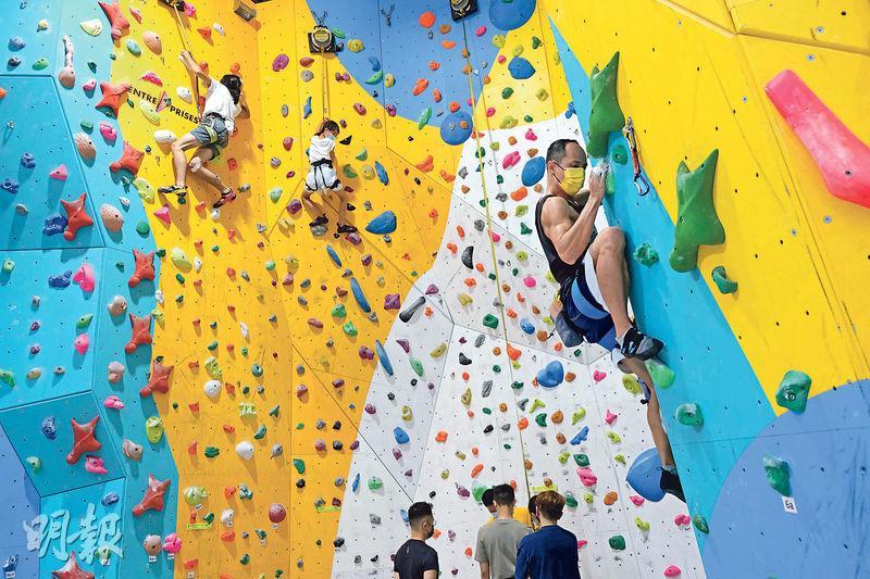 奧運2021 運動攀登 速度賽 抱石賽 領攀賽 攀石 攀登