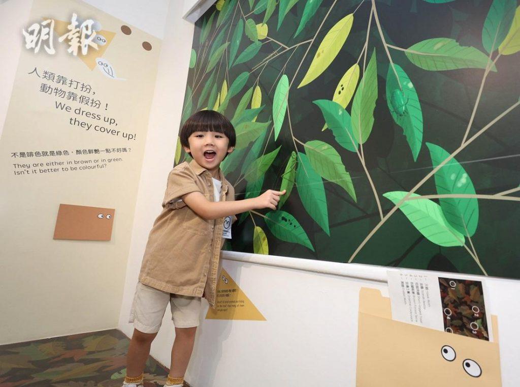 【郊遊好去處】去龍虎山體驗「動物的煩惱日常」 了解大自然的趣味